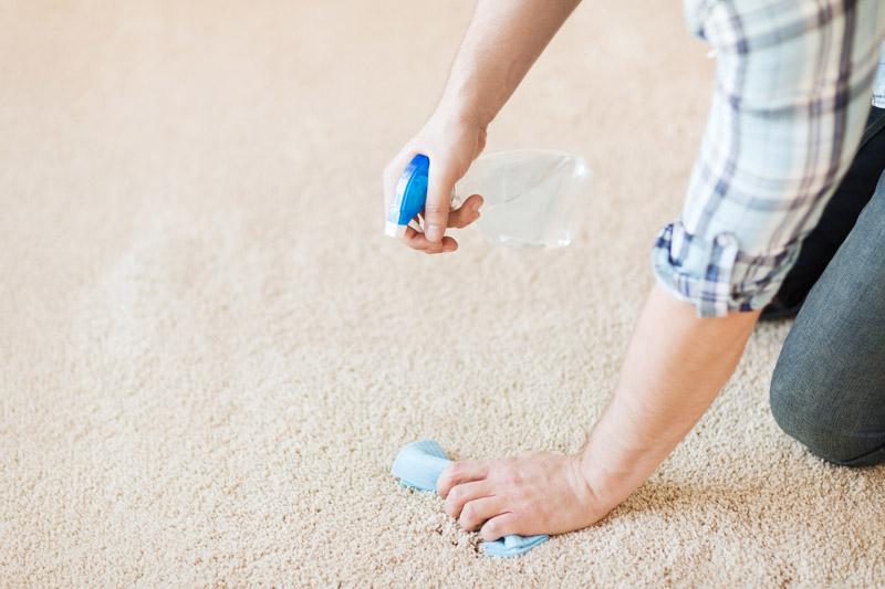 Nettoyer les taches sur un tapis